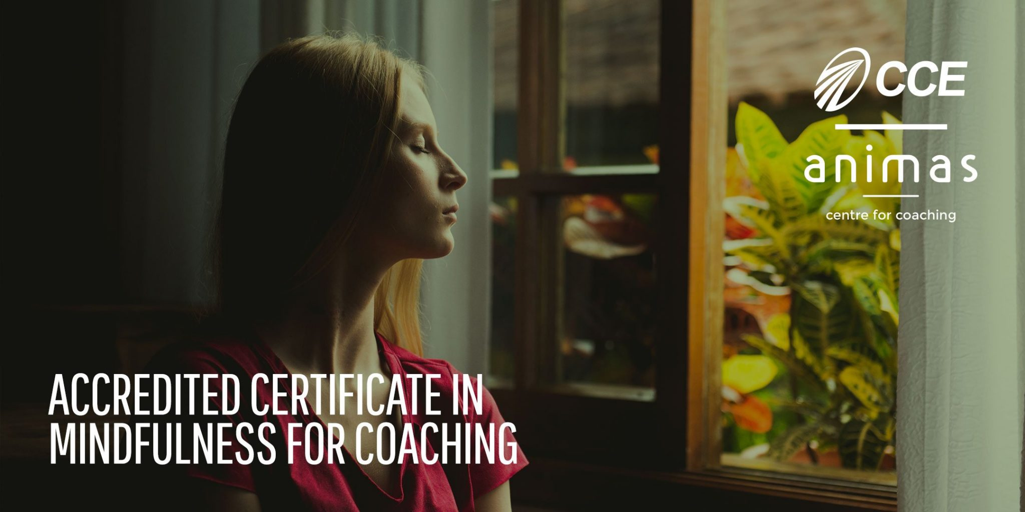 Mindfulness for Coaching
