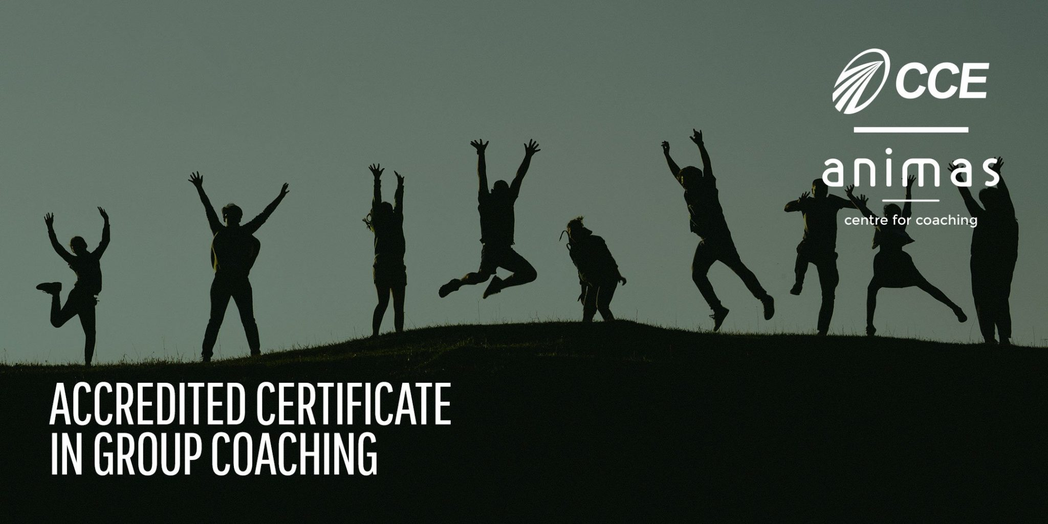 Accredited Certificate in Group Coaching