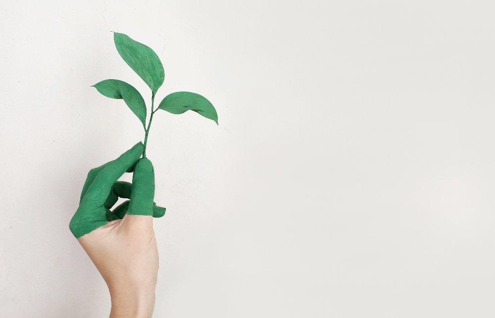 life coaching business grow