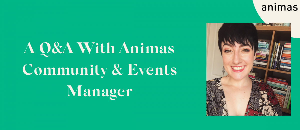 A QA With Animas Head of Social Impact